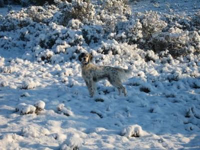 dama en la nieve